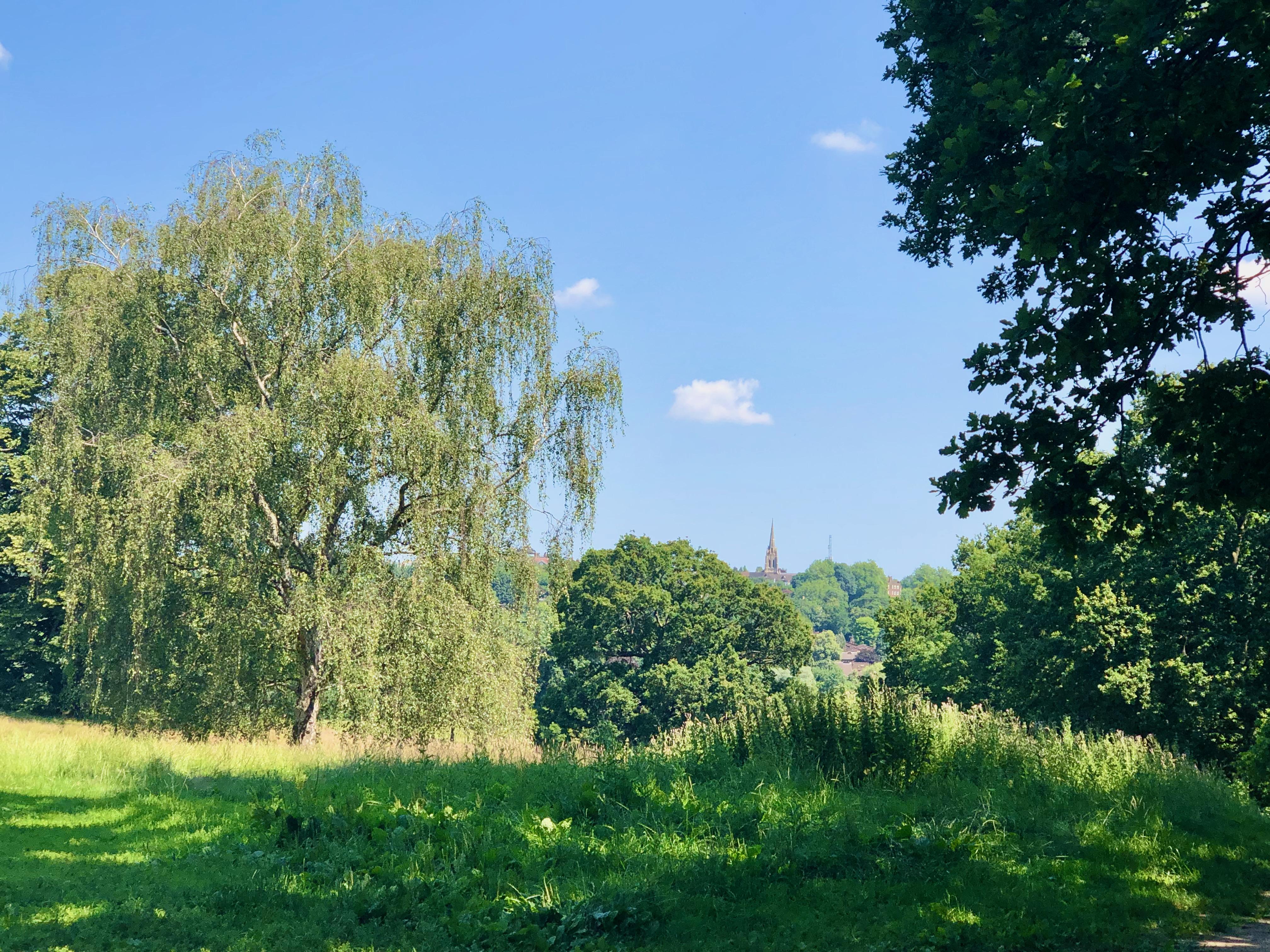 hampstead heath with church