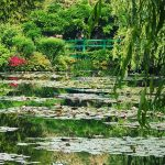 lily pool foundation claude monet